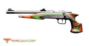 Chipmunk Pistol Hunter .22 WMR Stainless/Camo